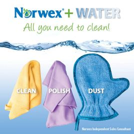 norwex and water
